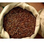 Jak przechowywać kawę? Fakty i mity o przechowywaniu kawy