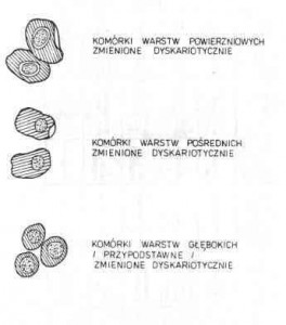 Rozmazy cytologiczne w zmianach zapalnych