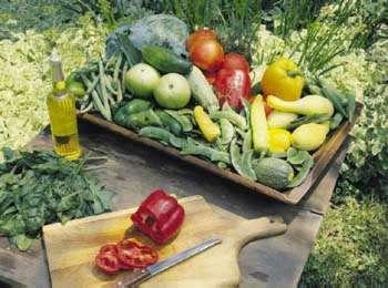 edz warzywa, chroń się przed rakiem  Jdz warzywa, chroń się przed rakiem  Jez warzywa, chroń się przed rakiem  Jed warzywa, chroń się przed rakiem  Jedzwarzywa, chroń się przed rakiem  Jedz arzywa, chroń się przed rakiem
